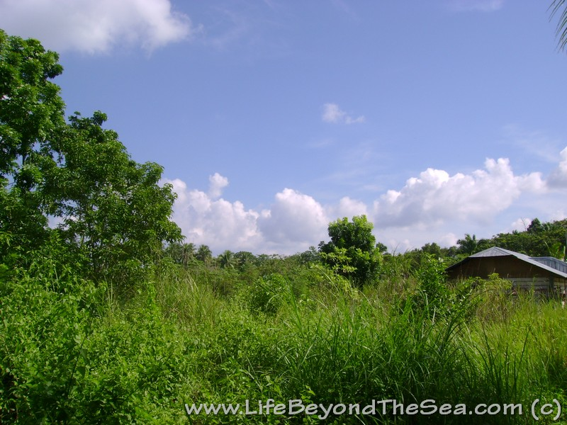 Bohol Province - My new home!