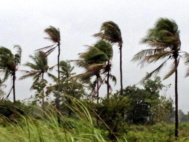 typhoon yolanda brushes near bohol